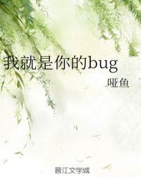 我就是你的bug